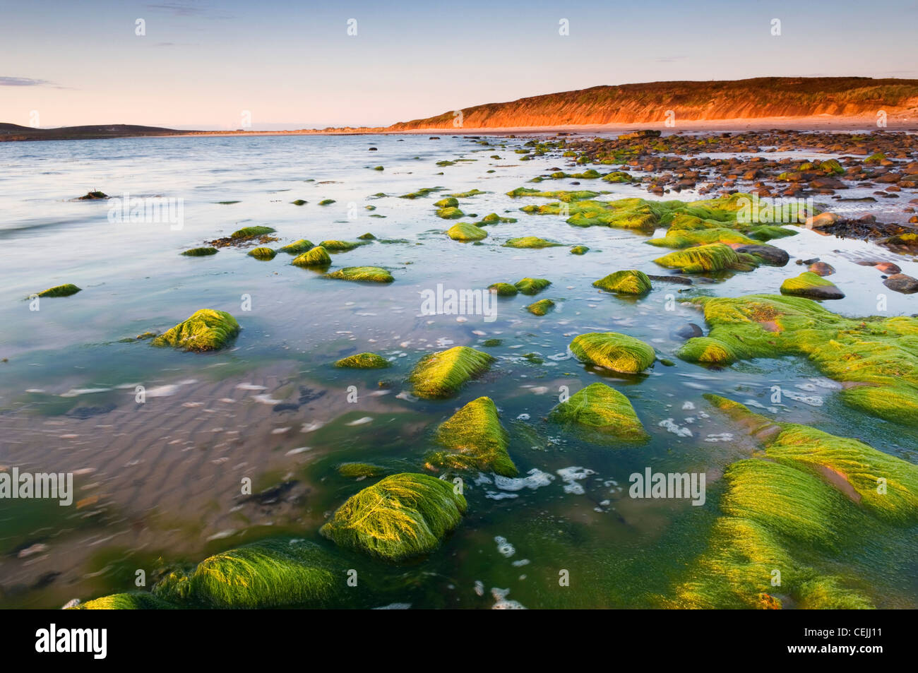 The Sands of Mussetter at sunset, on the island of Eday, Orkney Islands, Scotland. Stock Photo