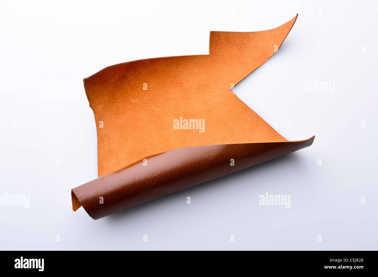Piece of brown leather - Stock Image