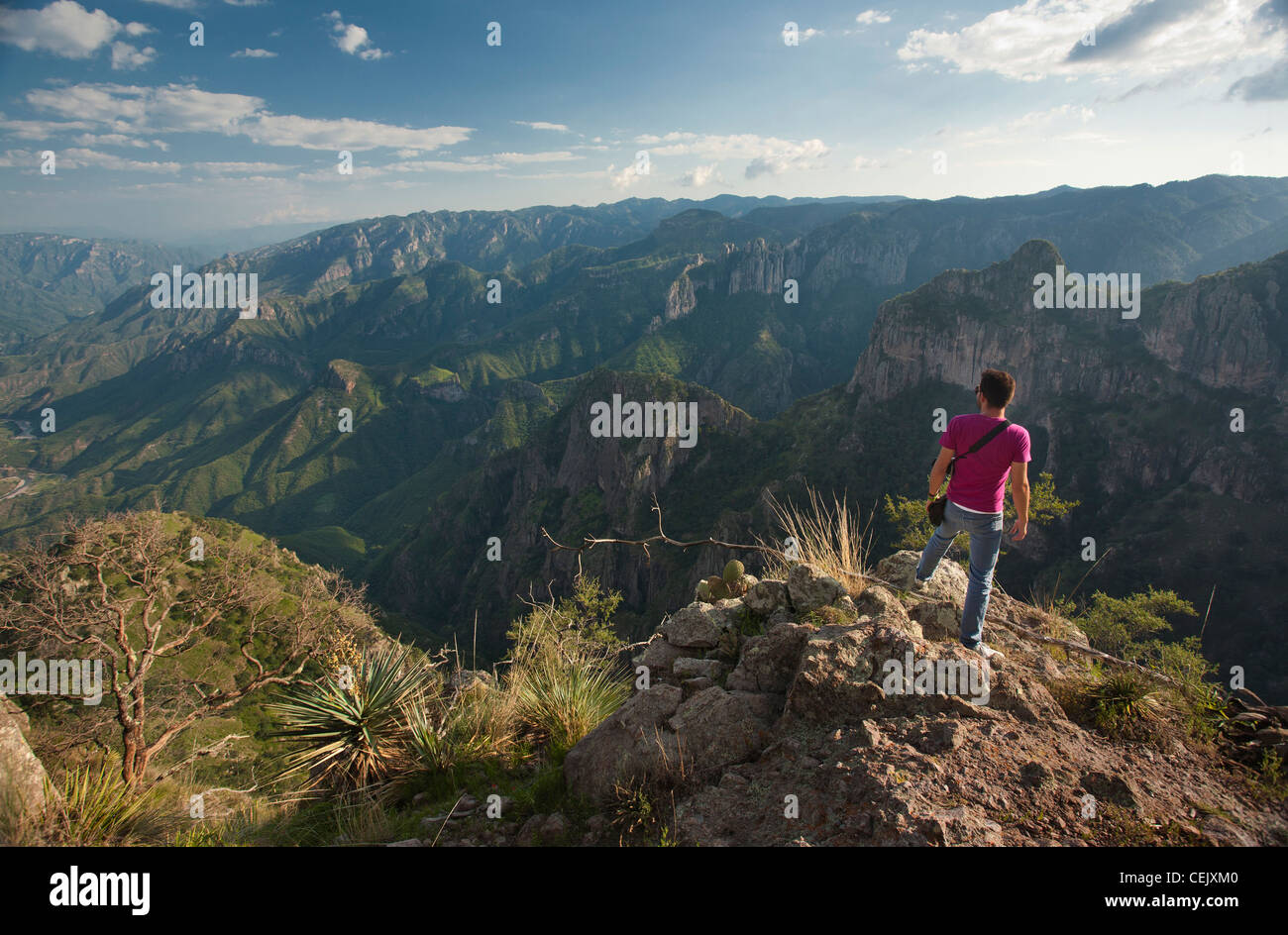 A man standing on the ridge of a cliff at the Copper Canyon in the region of Cerocahui, Chihuahua  Mexico. - Stock Image