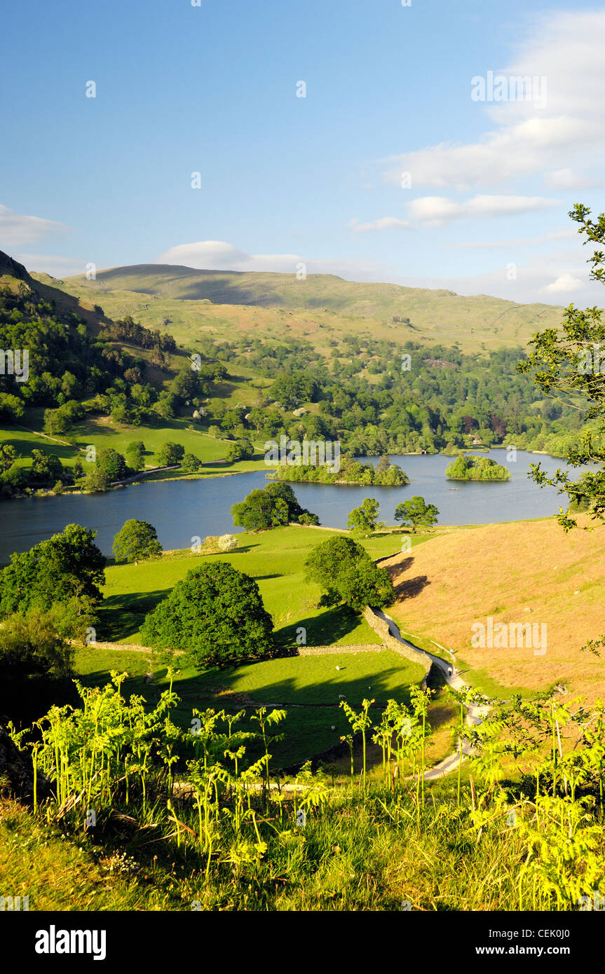 Lake District National Park, Ambleside, Cumbria, England. East over Rydal Water from Loughrigg Terrace. Summer - Stock Image