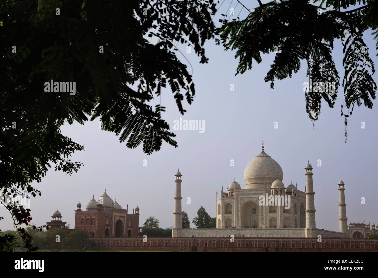 Wide shot of the Taj Mahal, Agra, India - Stock Image