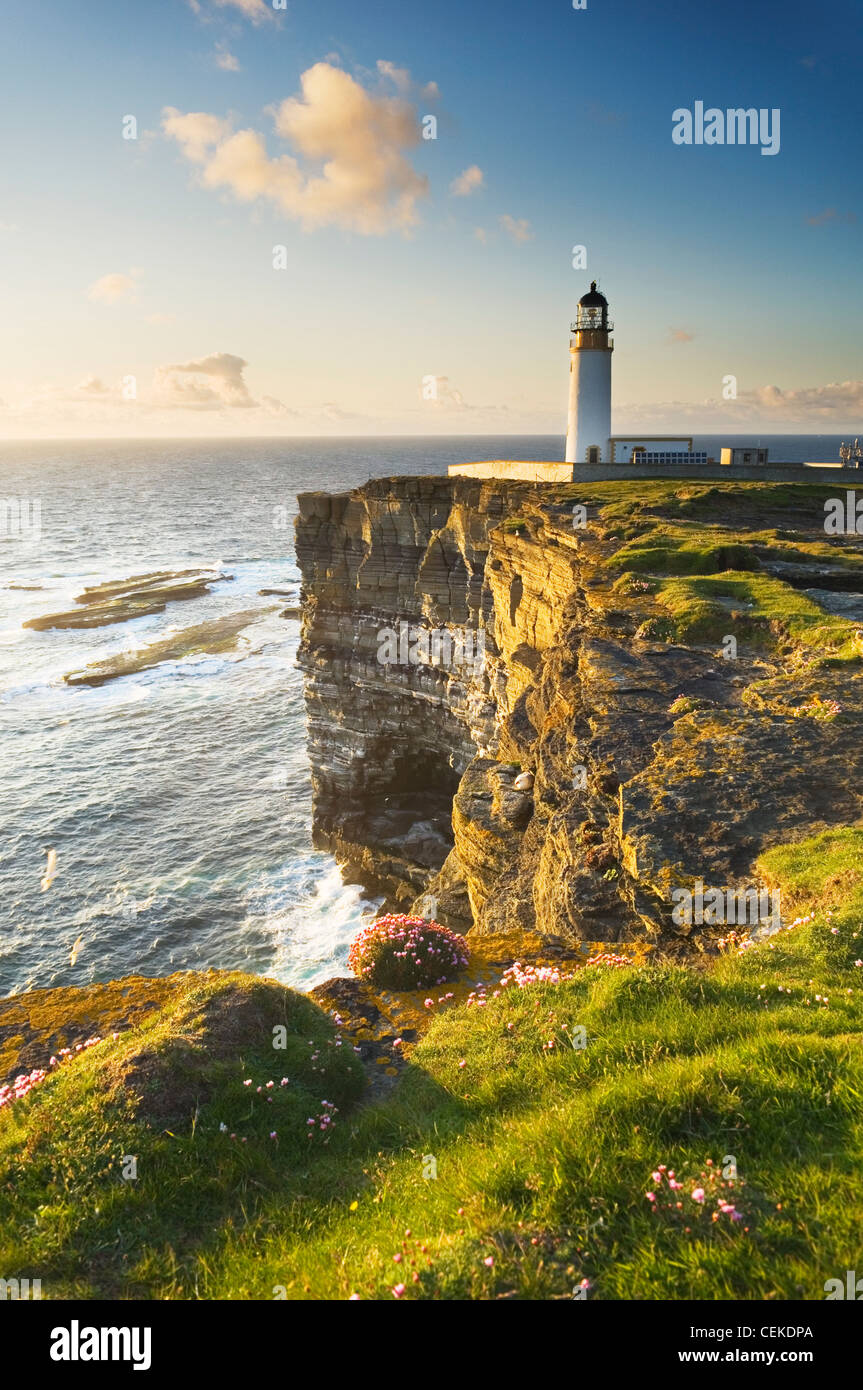 Noup Head seabird cliffs on the island of Westray, Orkney Islands, Scotland. - Stock Image