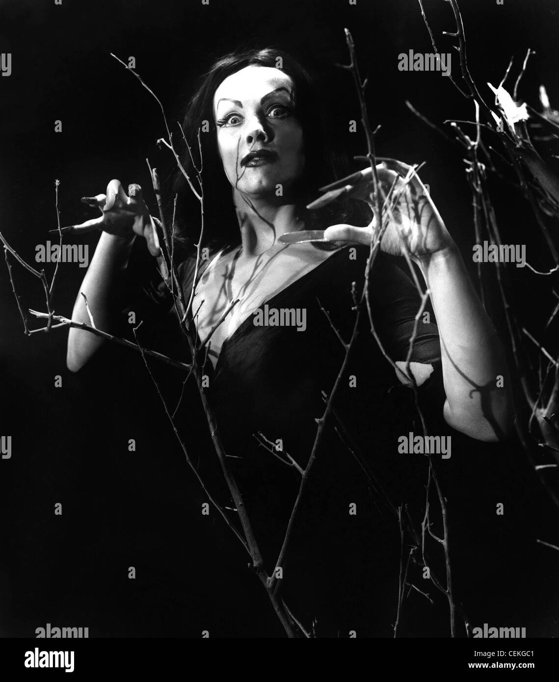 PLAN 9 FROM OUTER SPACE (1959) VAMPIRA EDWARD D. WOOD JR. (DIR) 010 MOVIESTORE COLLECTION LTD - Stock Image