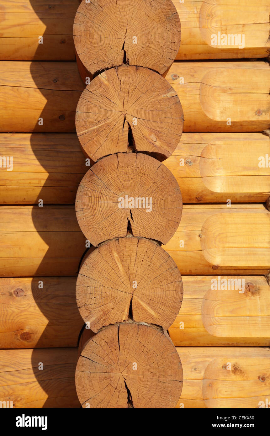 wooden logs - Stock Image