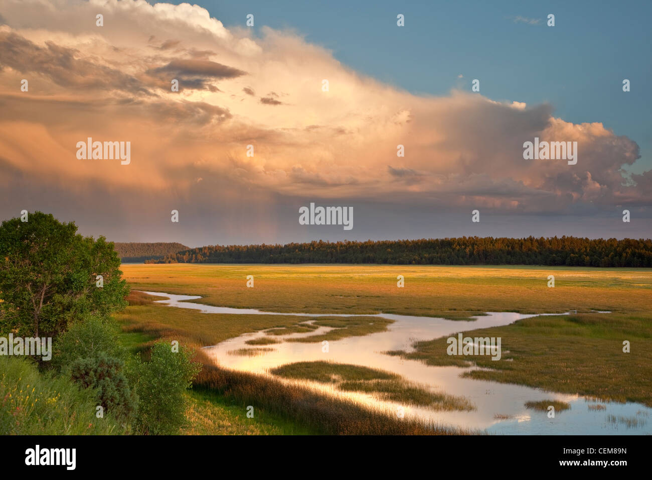 Lower Lake Mary, summer monsoon rainy season, Coconino National Forest, south of Flagstaff, Arizona, USA - Stock Image