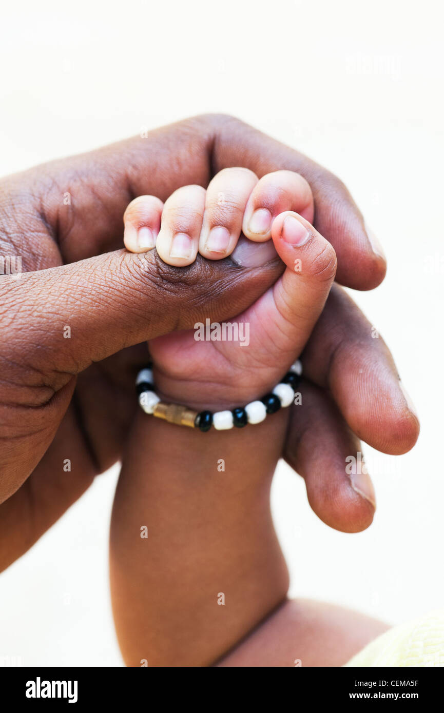 Indian mans hand holding his new born babies hand against a white background. Andhra Pradesh, India - Stock Image