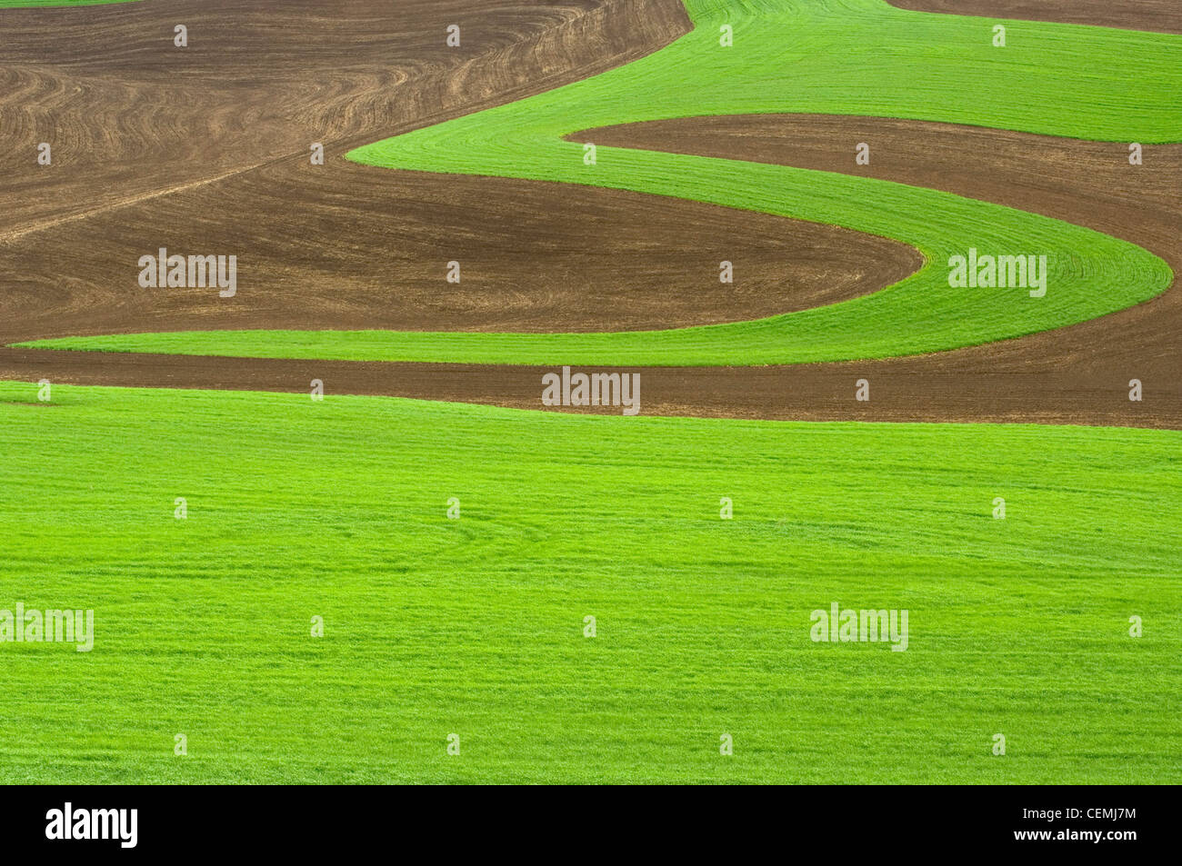 Growing and plowing patterns in the fields of the Palouse, Eastern Washington - Stock Image