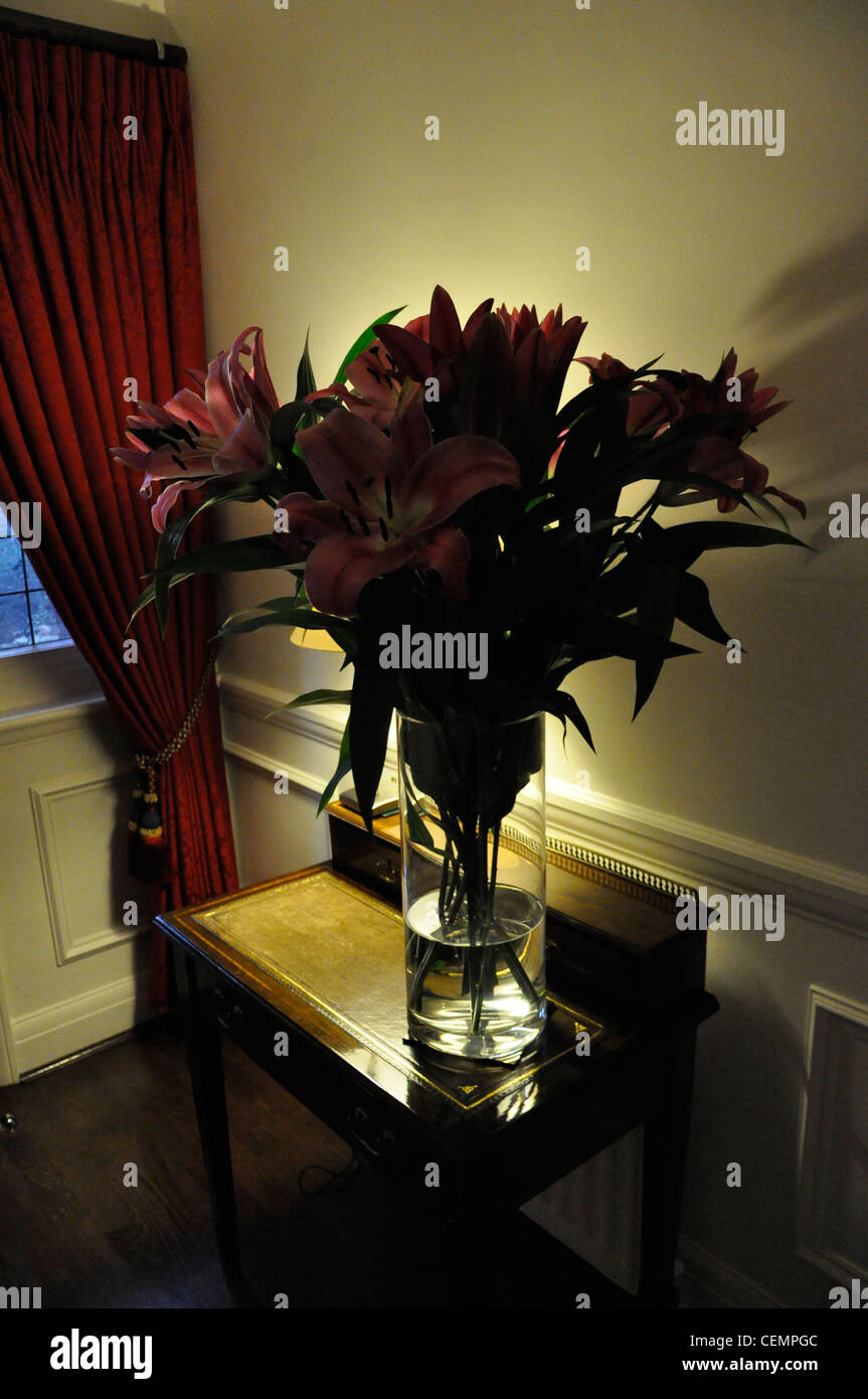 Claret lilies back lit upmarket interior - Stock Image