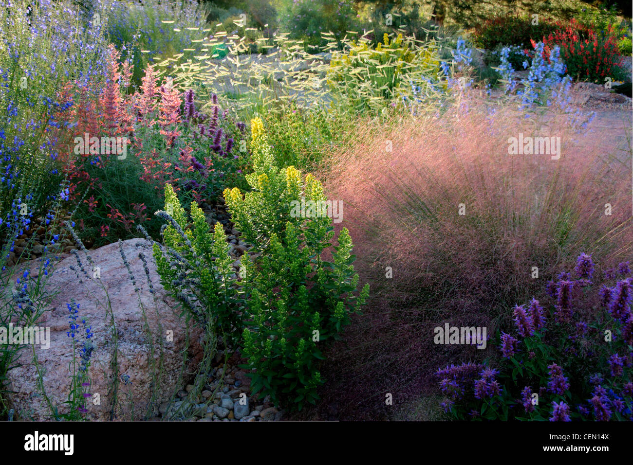 Perennials bed summer stock photos perennials bed summer stock xeriscape perennial flower bed stock image mightylinksfo