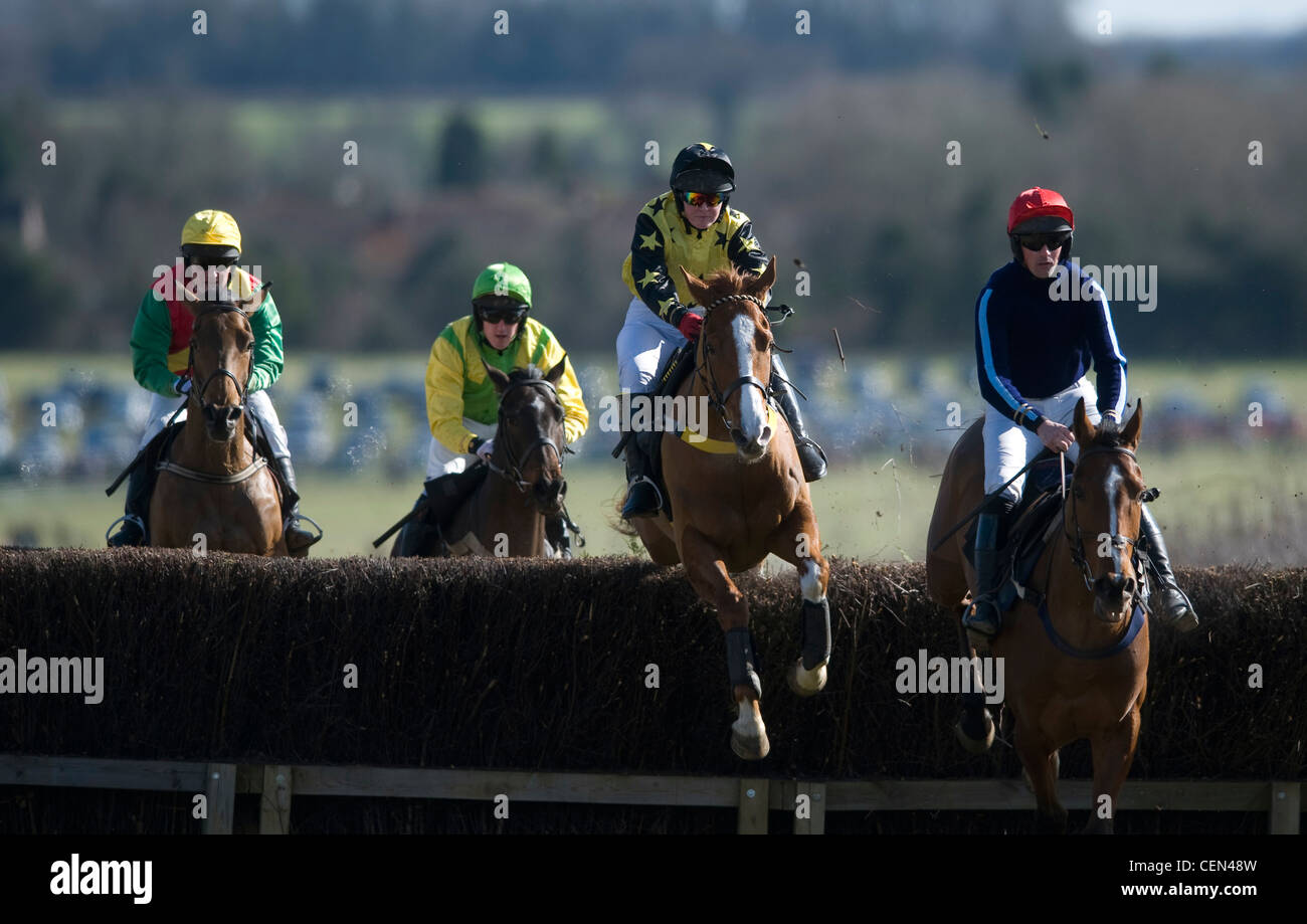 The Ginger one jumps a fence in the Gill Jarvis Memorial Race at the South East Hunts Club Point to Point - Stock Image