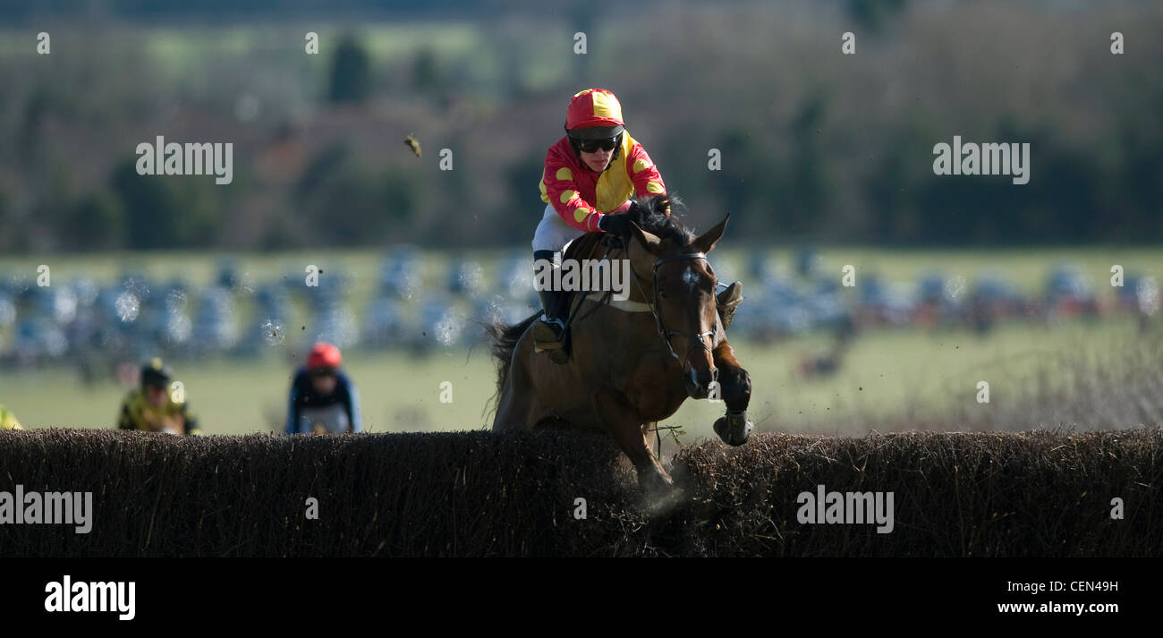 Mr Maybe riden by W Hickman jumps a fence in the Gill Jarvis Memorial Race at the South East Hunts Club Point to - Stock Image