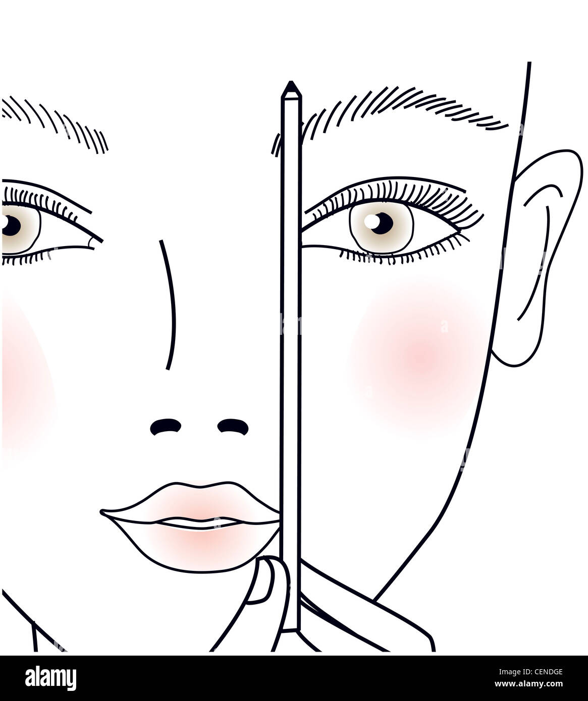 Step by Step How to shape your brows Step Shaping eyebrows, using a pencil to connect the corner of the lips and - Stock Image