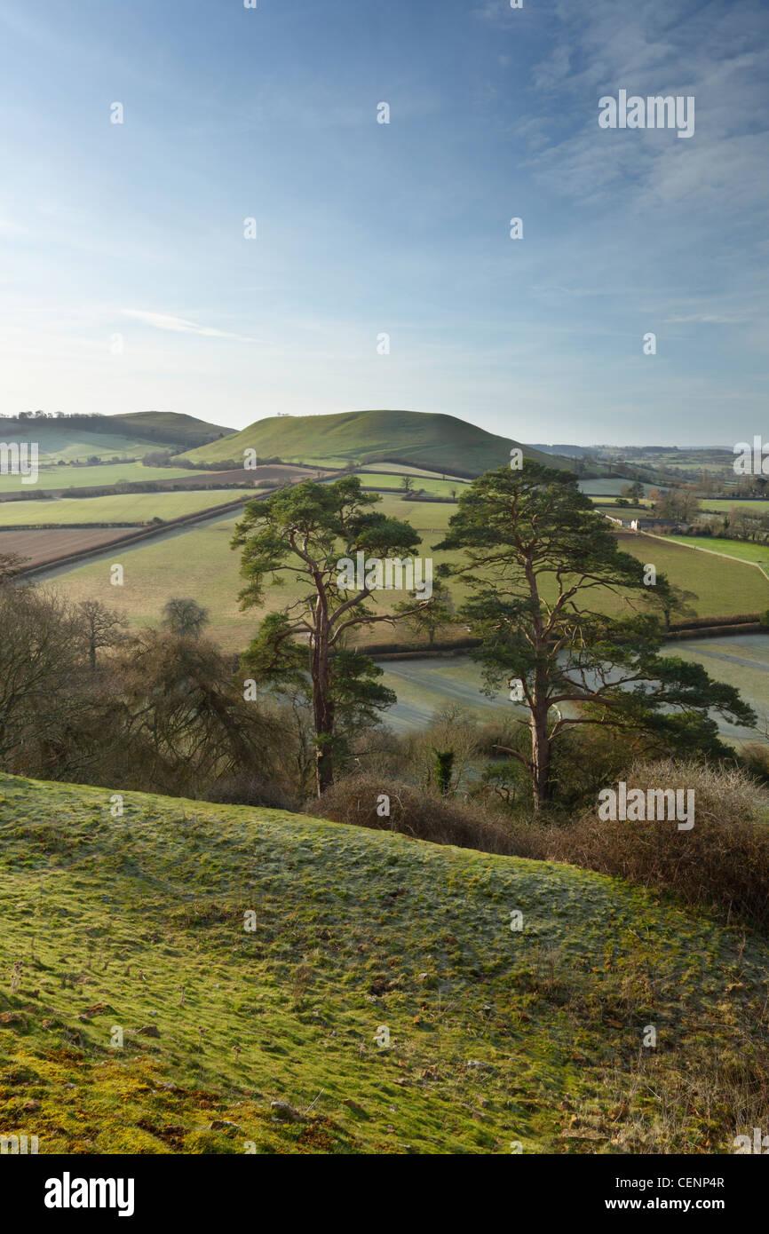 View from Cadbury Castle towards Parrock Hill. Somerset. England. UK. - Stock Image