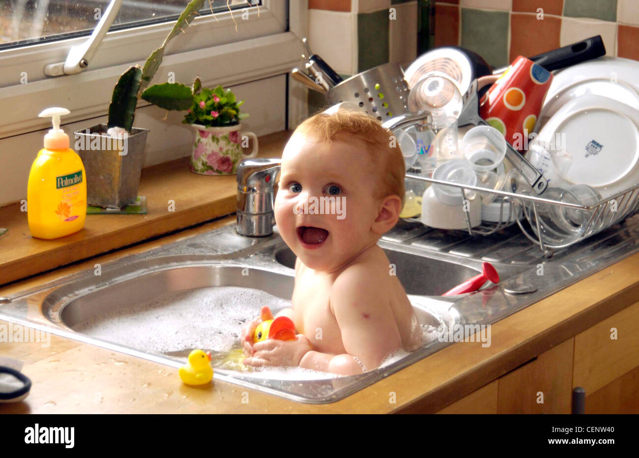 Rubber Duck Sink Stock Photos & Rubber Duck Sink Stock Images - Alamy