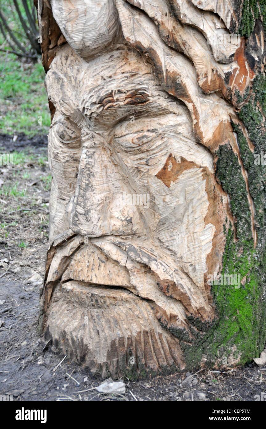 Viking sculpture wood carving tree stump cut carving beard face art artistic public art - Stock Image