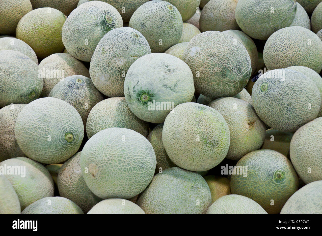 Honeydews raw background - Stock Image