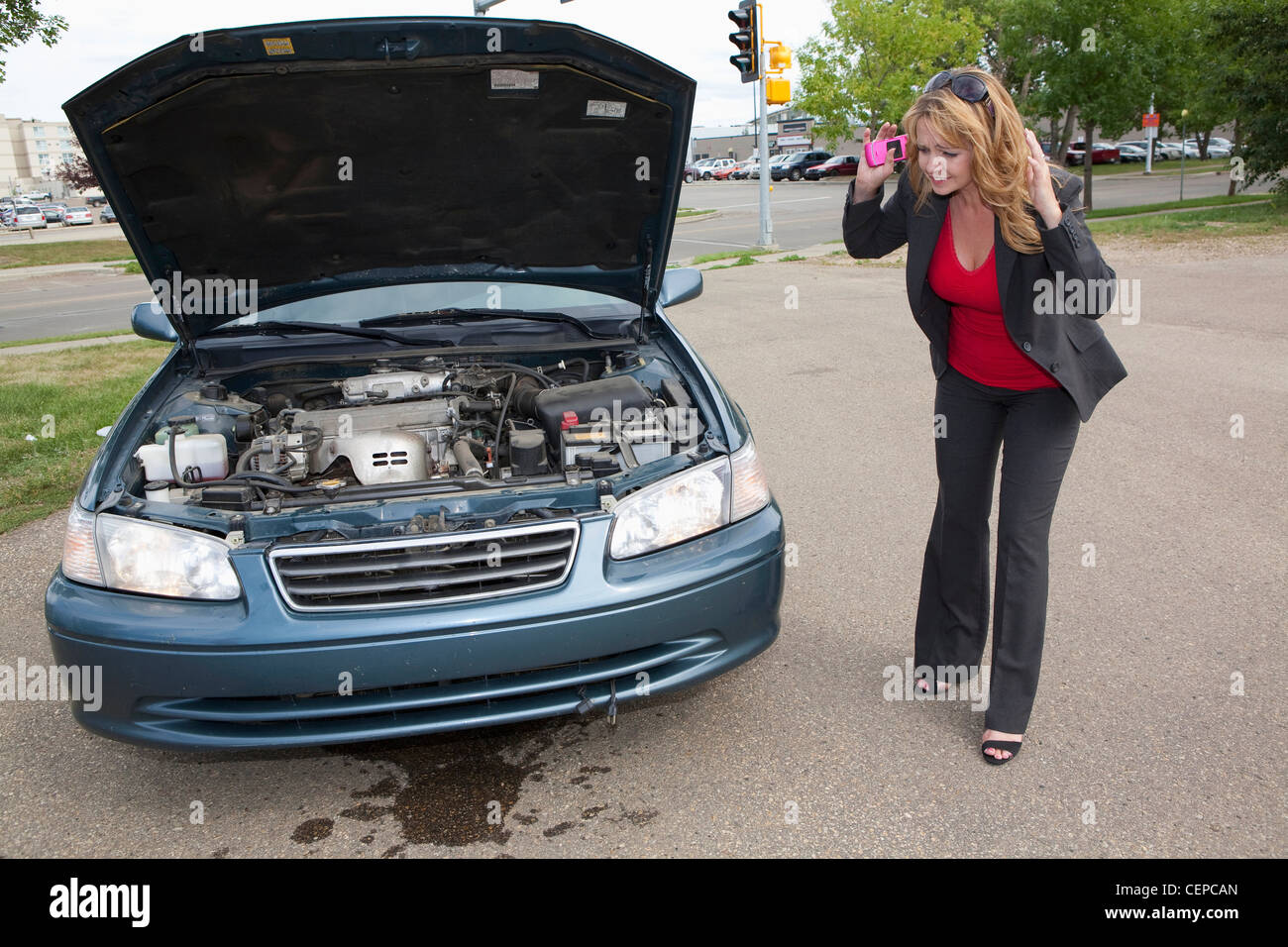 a woman looks at fluid leaking from her car; edmonton, alberta, canada - Stock Image