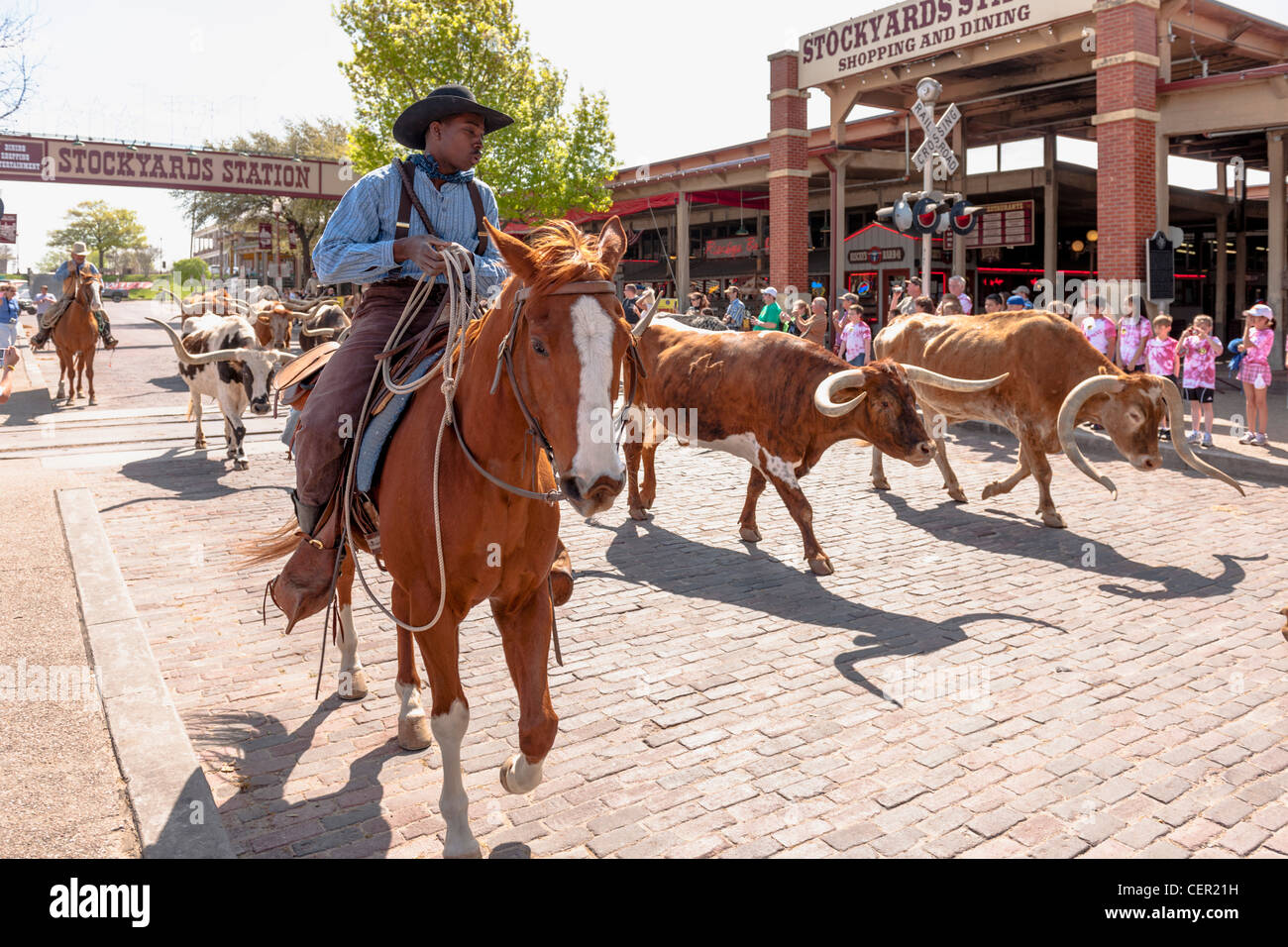 Stockyards station Cattle Drive, Fort worthStock Photo
