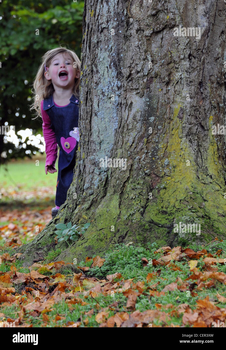 A young girl peeks out from behind a tree during a game of hide and seek on Hubbard's Hills. - Stock Image