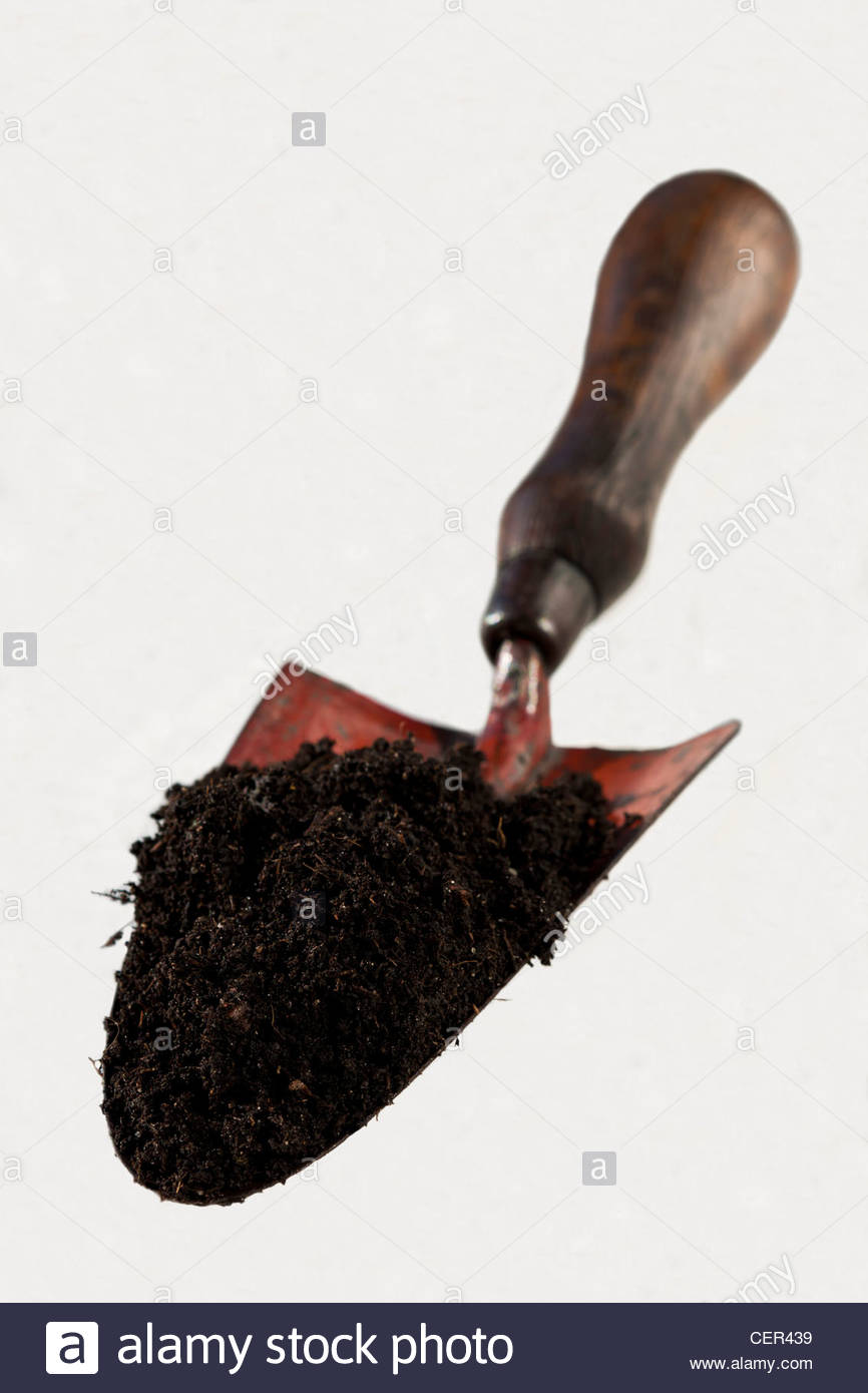 trowl loamy soil compost garden hand tool practical job white background cut out - Stock Image