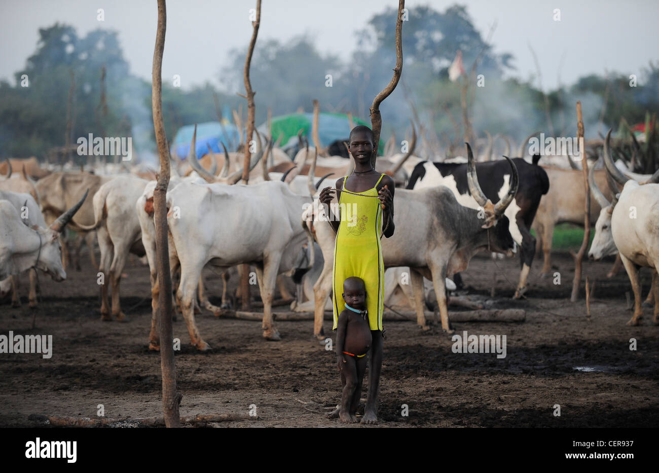 SOUTHERN SUDAN, Bahr al Ghazal region , Lakes State, Dinka tribe with Zebu cows in cattle camp near Rumbek, young - Stock Image