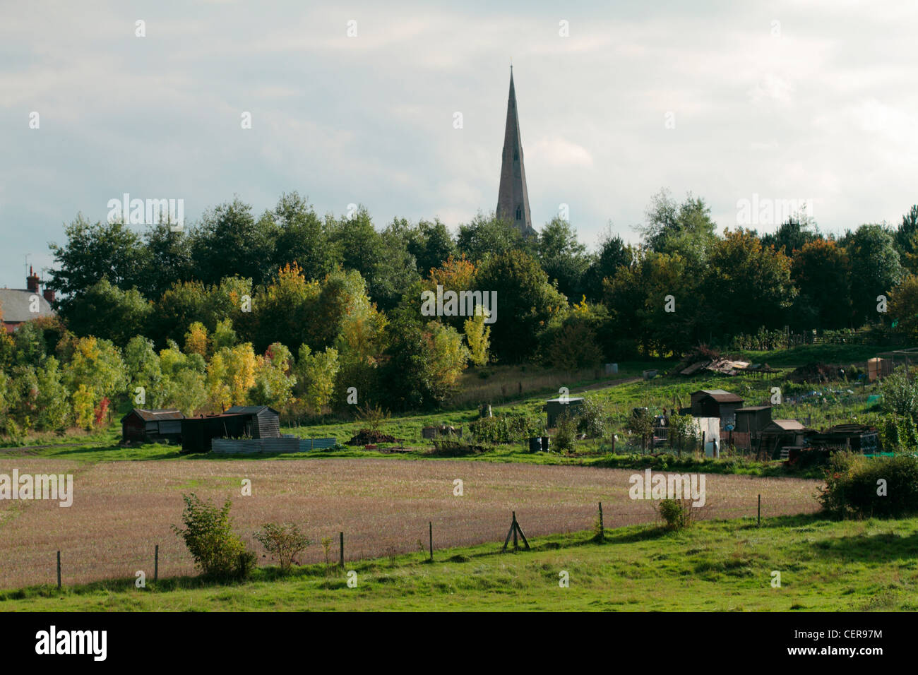 Fields, allotments and St Katharine's church spire in the village of Irchester. - Stock Image