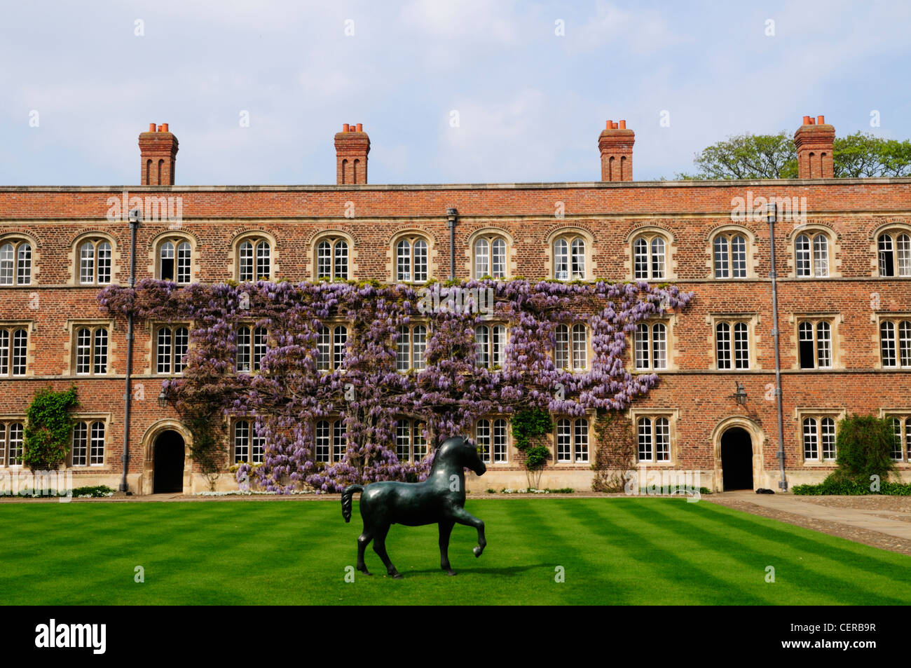 Bronze Horse by Barry Flanagan in First Court at Jesus College, part of the University of Cambridge. - Stock Image