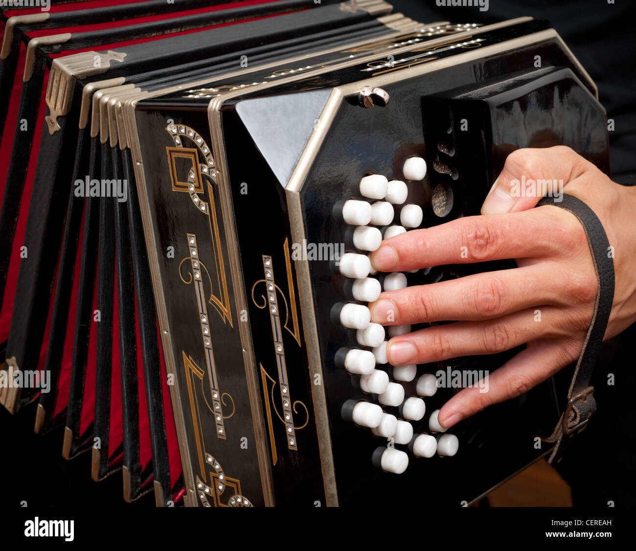 Playing the bandoneon, traditional tango instrument, Argentina. - Stock Image