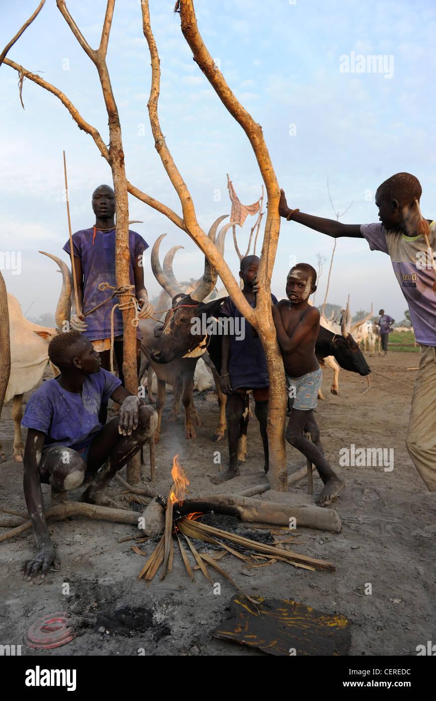 SOUTHERN SUDAN, Bahr al Ghazal region , Lakes State, Dinka tribe with Zebu cows in cattle camp near Rumbek - Stock Image
