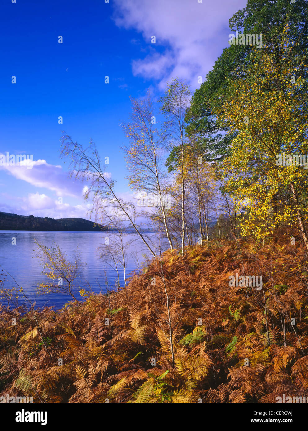 Autumnal scene at Loch Garry. - Stock Image