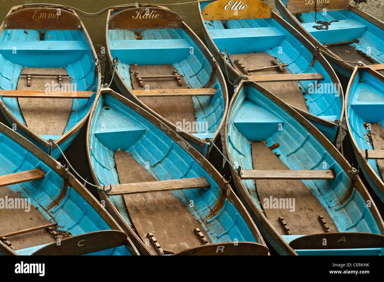 UK Oxford Rowing Boats - Stock Image