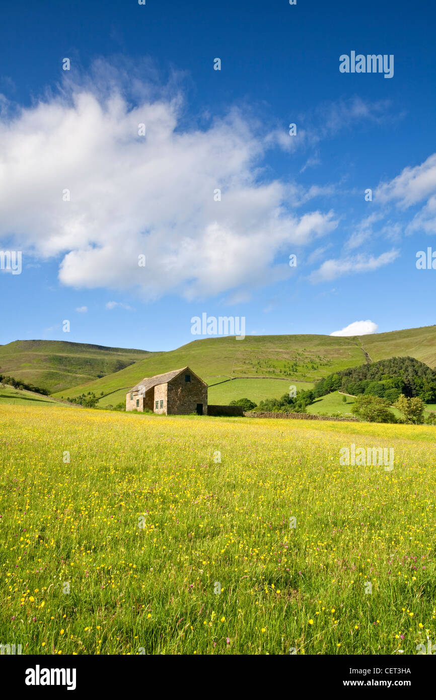 Stone barn on the way up to Kinder Scout above Upper Booth in the Peak District National Park. - Stock Image