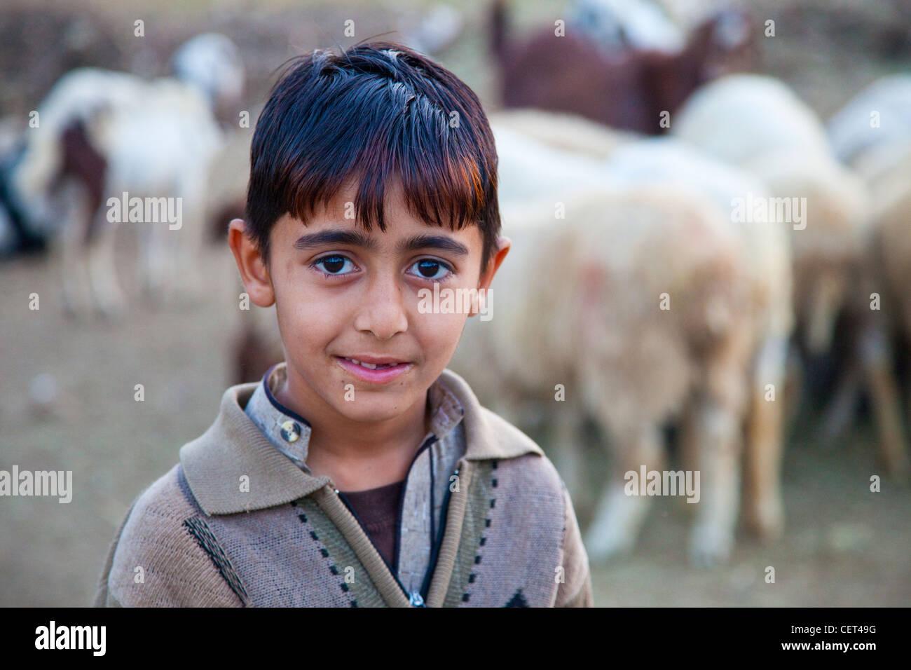 Boy shepherd in Islamabad, Pakistan - Stock Image