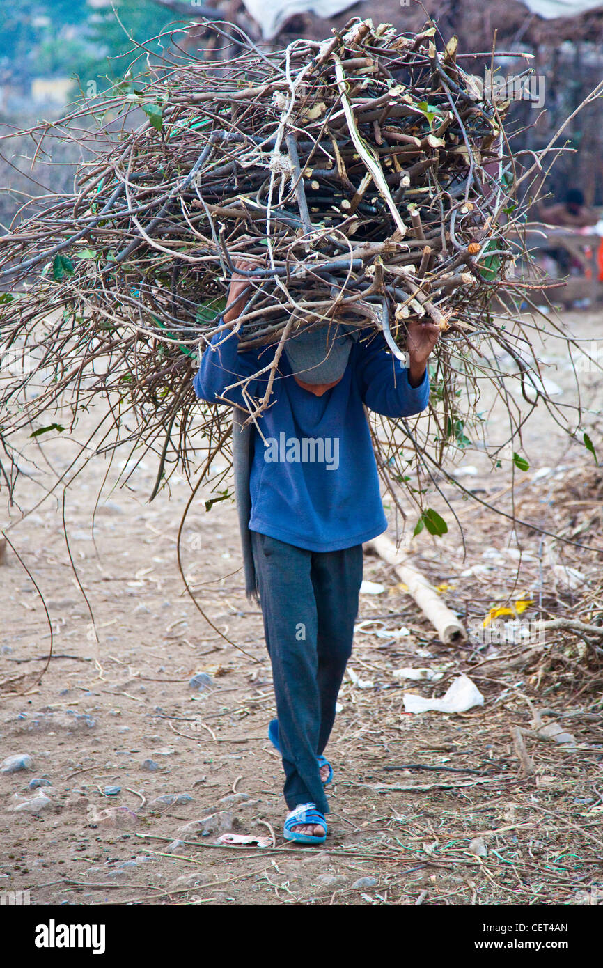 Carrying a bundle of firewood, Islamabad, Pakistan - Stock Image