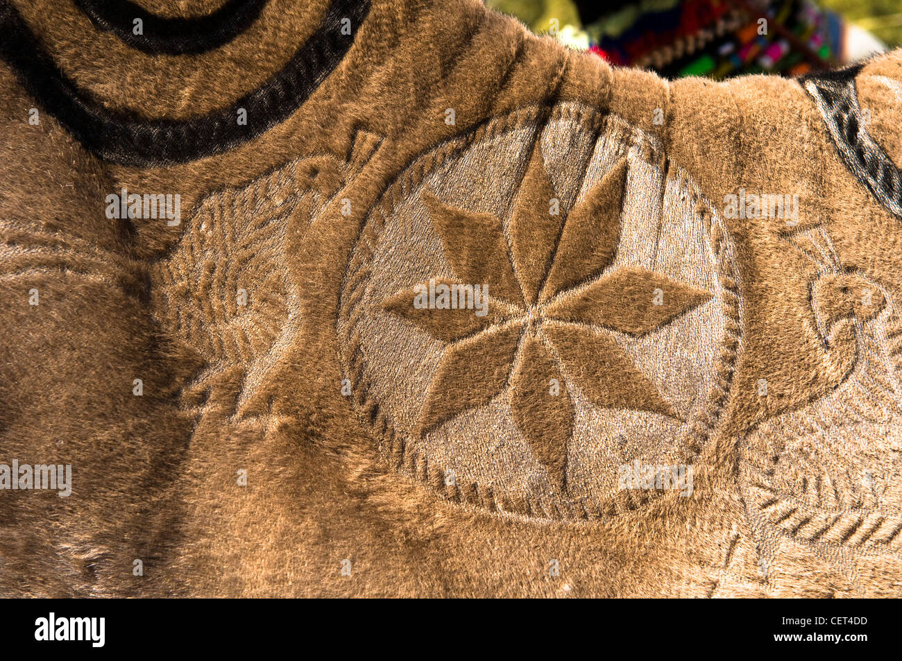 Beautiful patterns decorating a camel in the Thar desert in India. - Stock Image