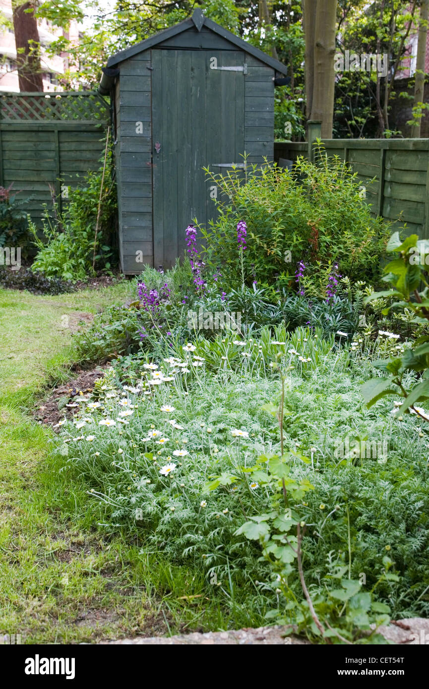 Renovated Flat Lawned Back Garden With Flower Borders Wood Fence