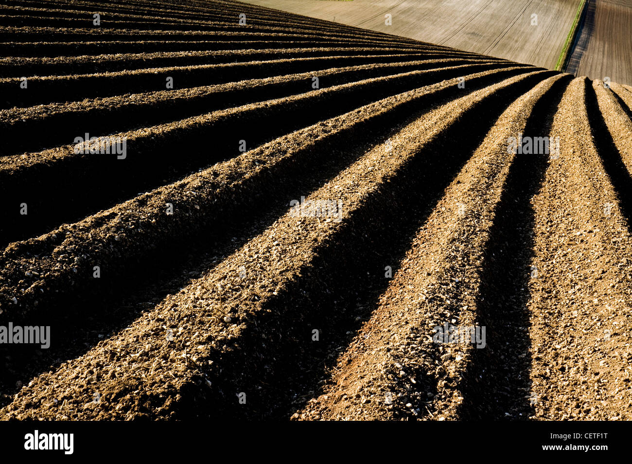An abstract view of a ploughed field in North Yorkshire. - Stock Image