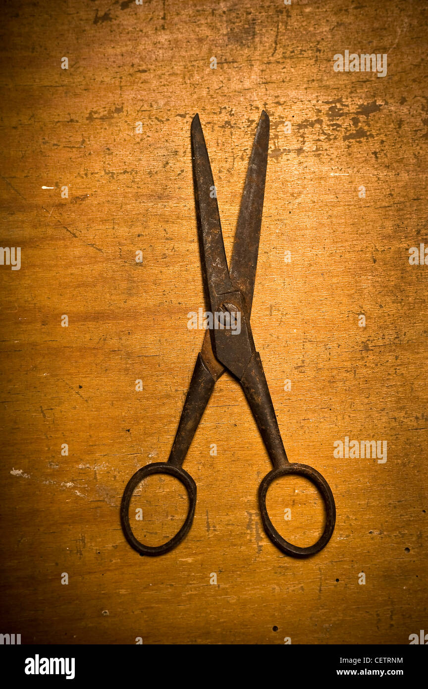 old rusty pair of scissors - Stock Image