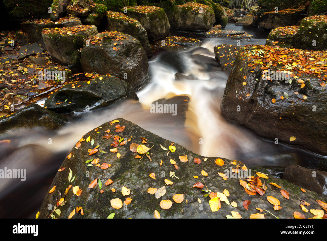 The tumbling waters of Mill Gill Force near Askrigg, North Yorkshire Stock Photo
