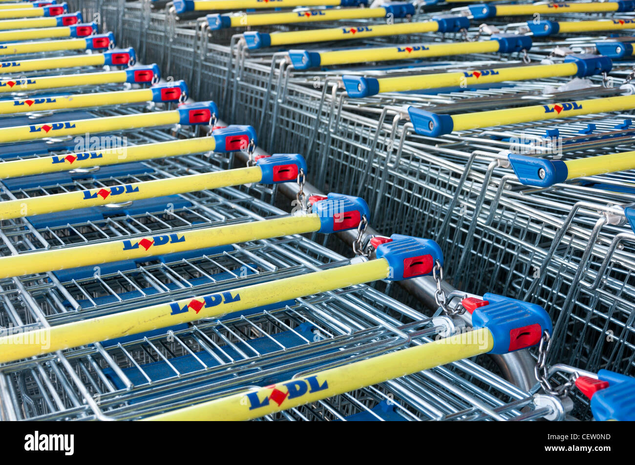 Lidl Supermarket Shopping Trolleys Stock Photo 43575321-1218