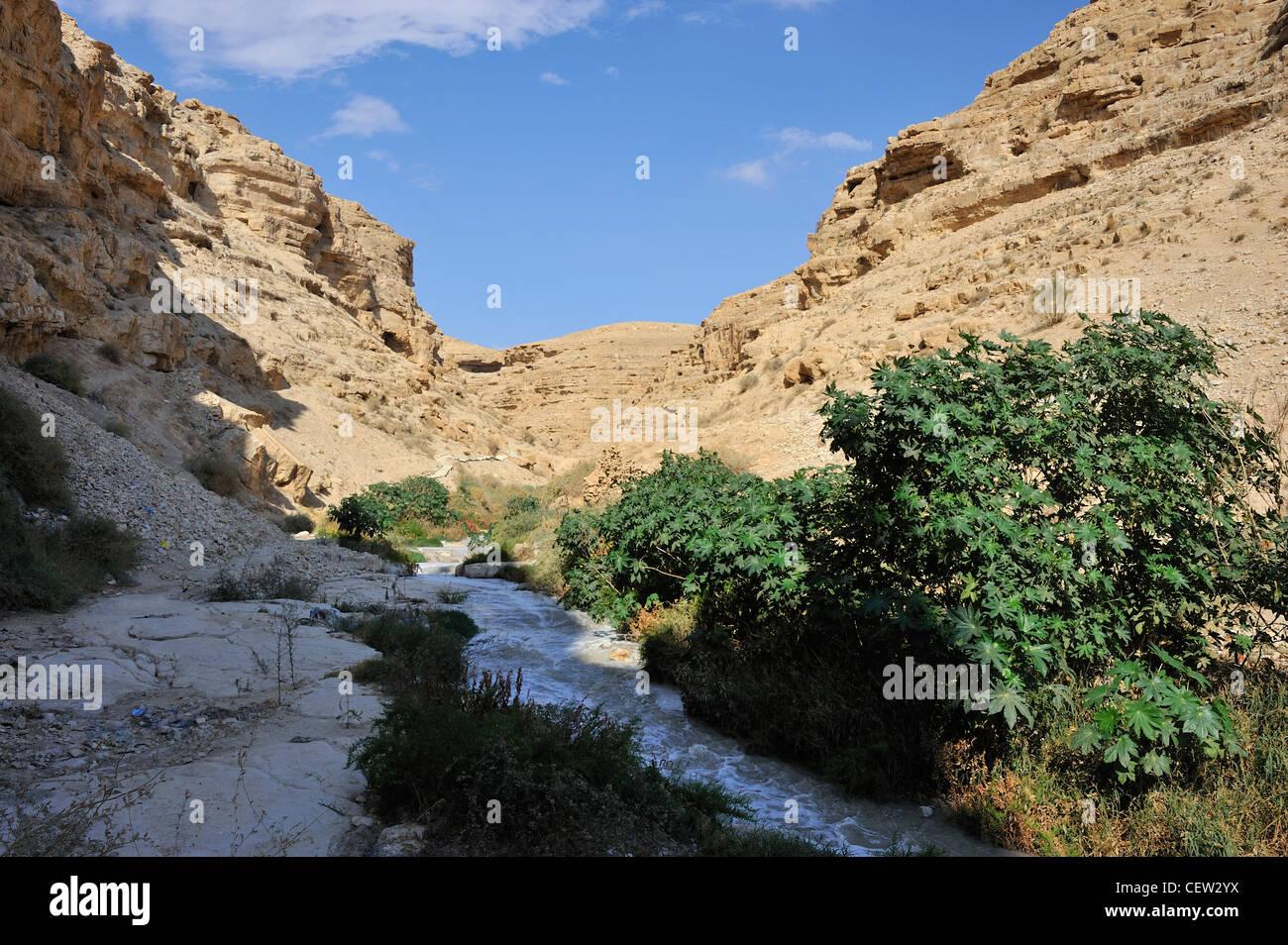 The Kidron river canyon close to Mar Saba monastery in the Judea desert Stock Photo