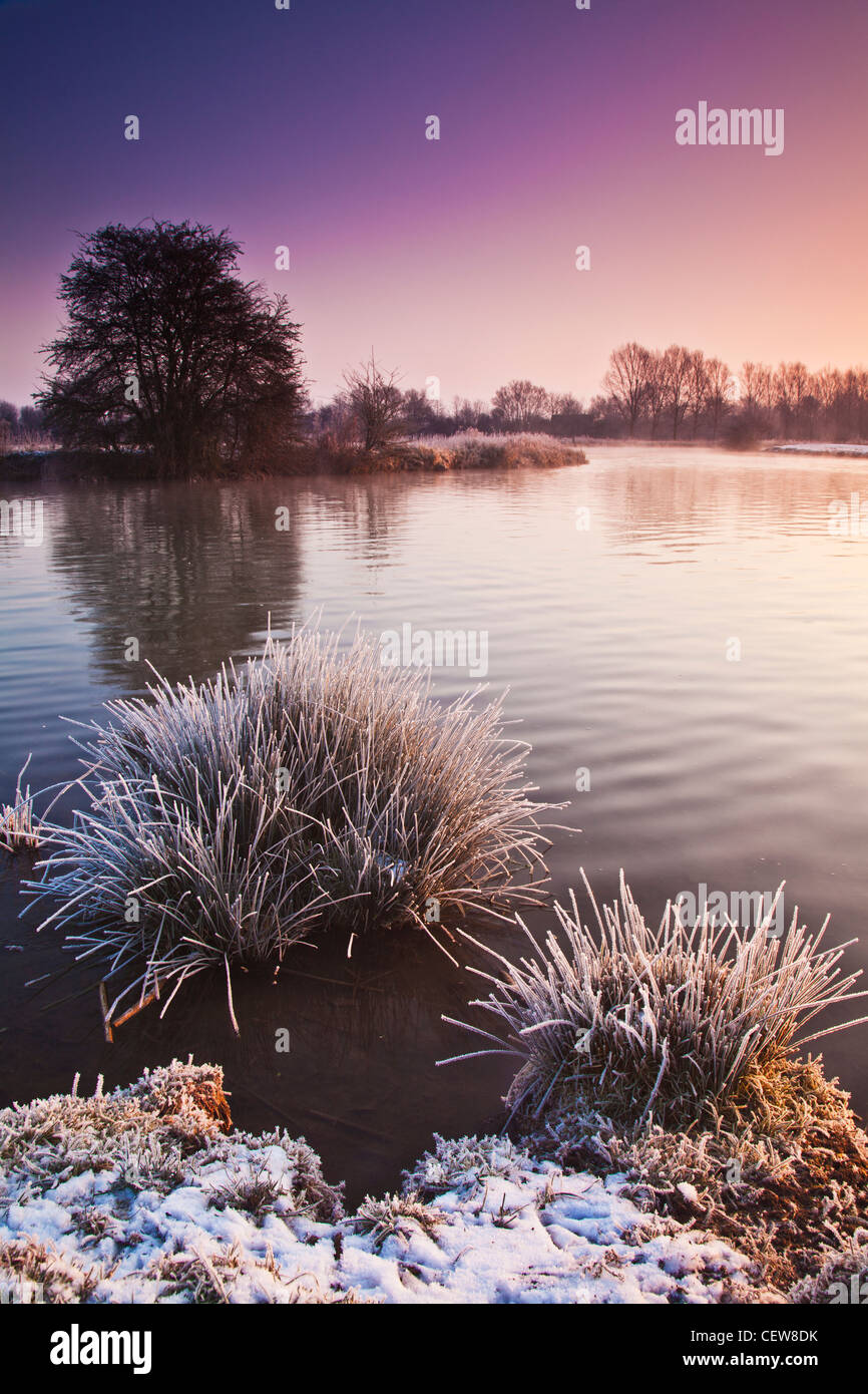 A swan glides by on a frosty winter dawn on the River Thames at Lechlade, Gloucestershire, England, UK - Stock Image