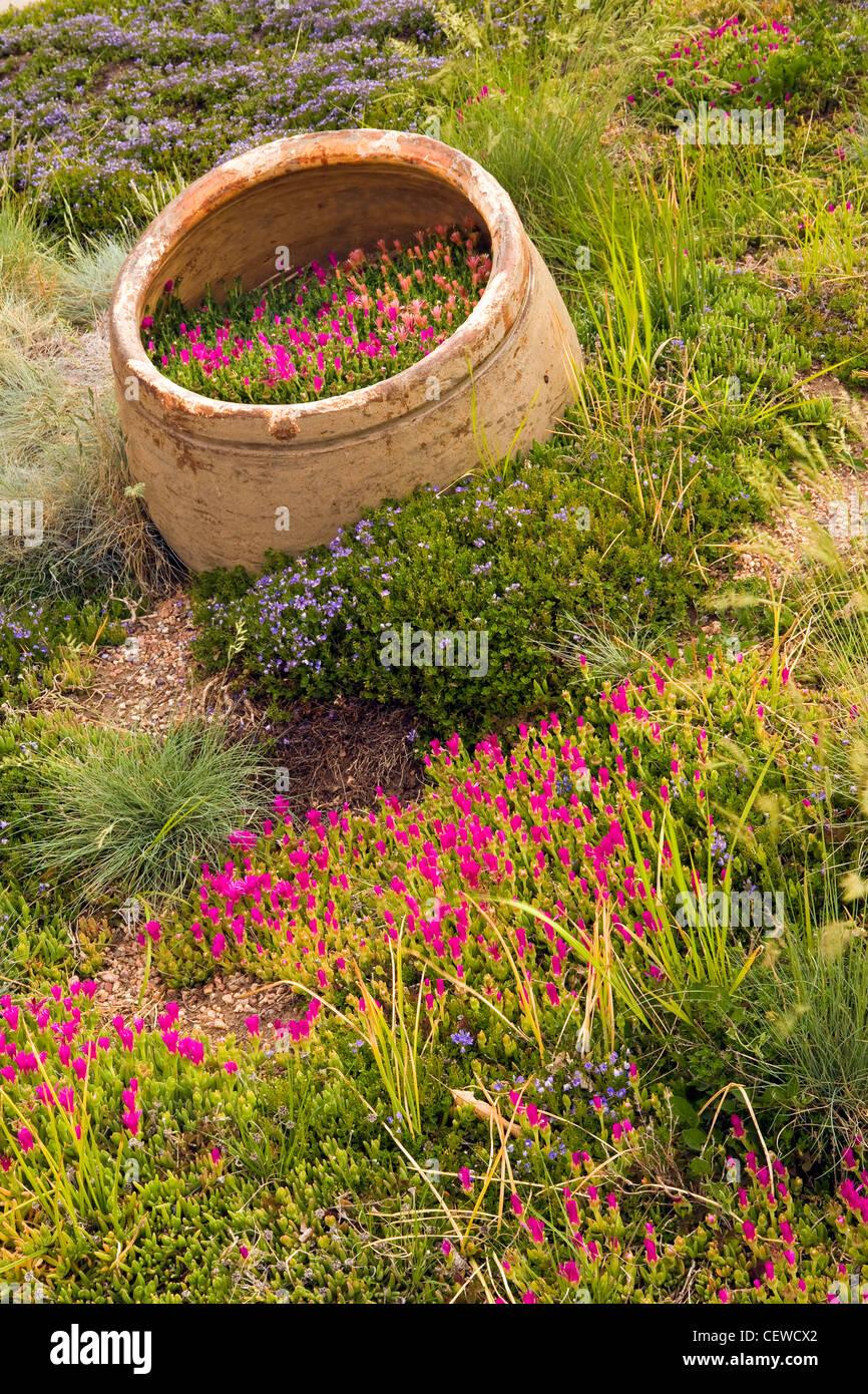 Denver Botanic Garden Stock Photos & Denver Botanic Garden Stock ...