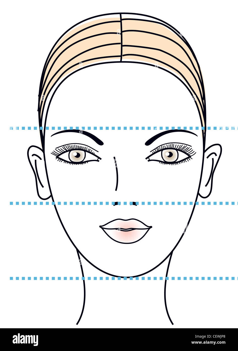 Different face shapes: a face with equal distances between eyebrows, nose and chin - Stock Image