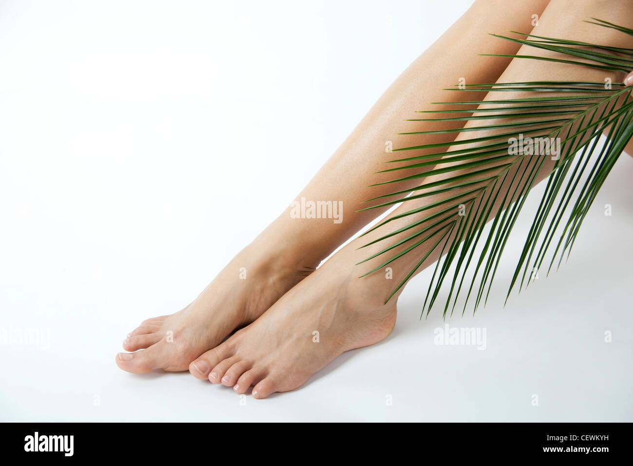 Woman holding palm frond against bare legs, cropped - Stock Image