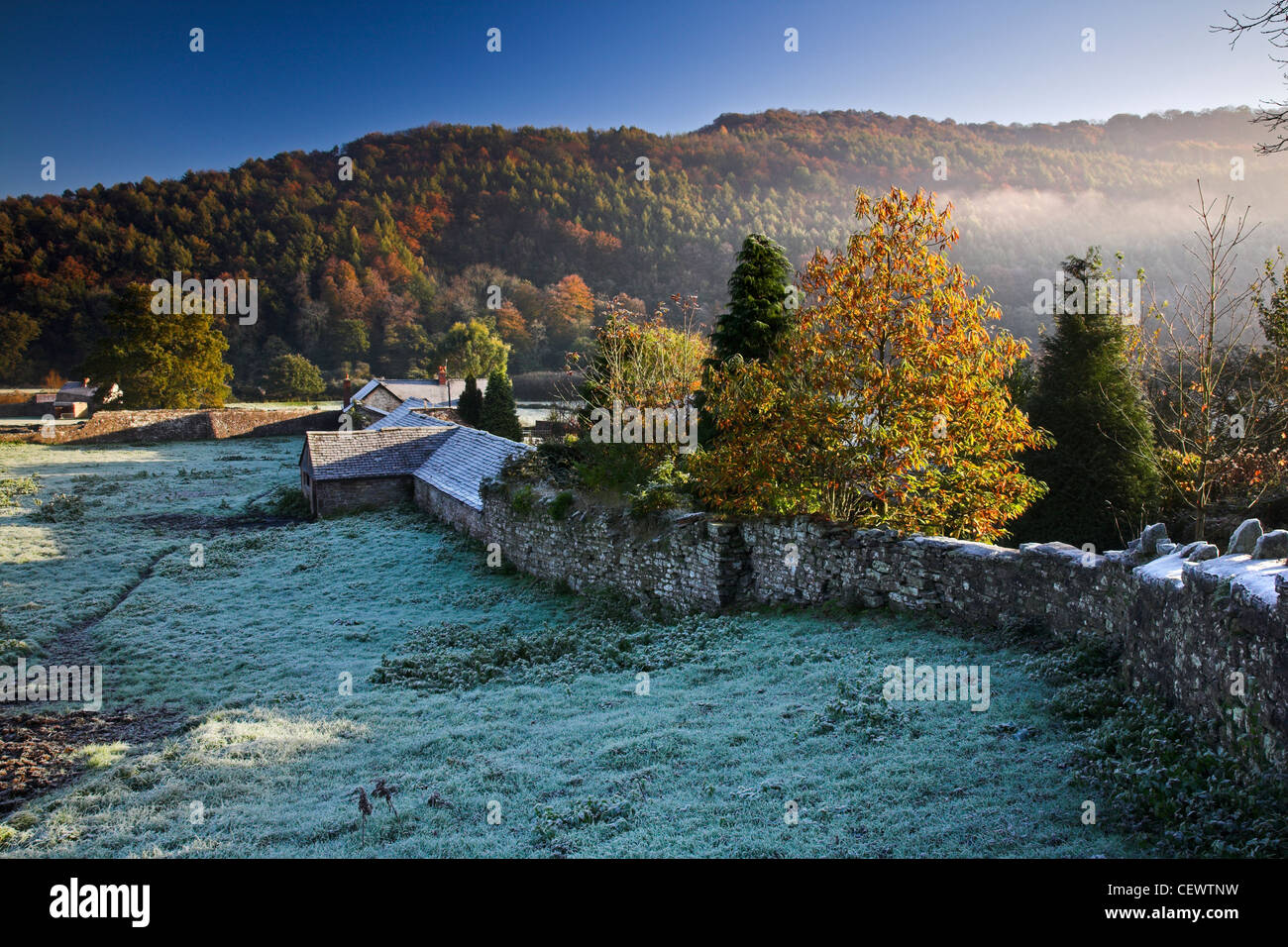 The Wye Valley at Tintern at dawn. With a tidal range of twenty feet, Tintern has learnt to live with tidal flooding, Stock Photo