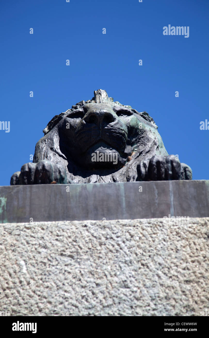 One of Lion statues at Rhodes Memorial in Cape Town - Stock Image