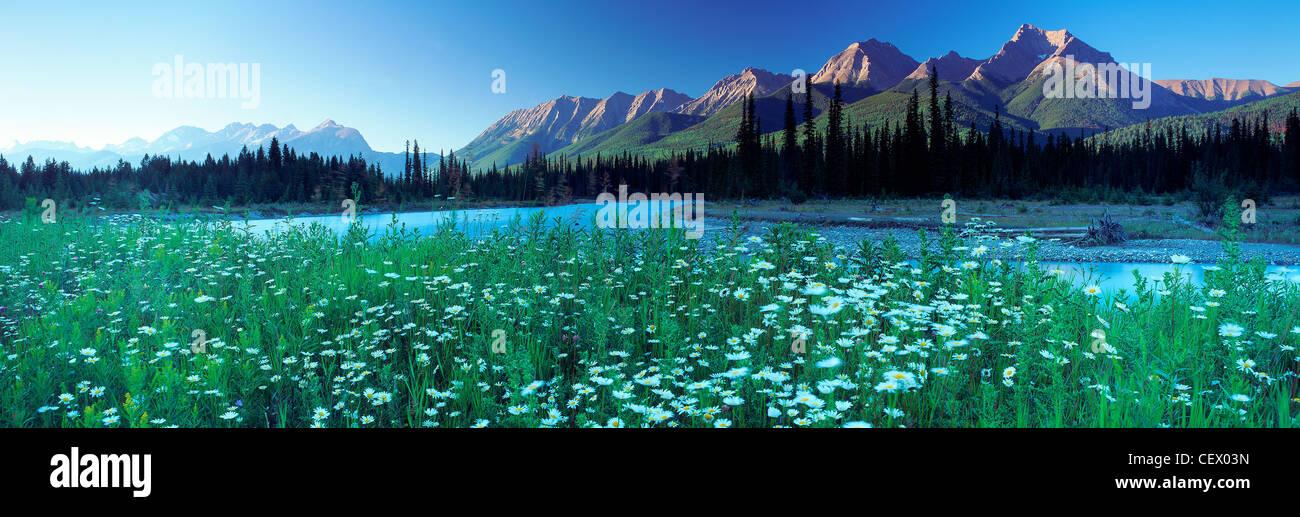 The Kootenay River & The Rockies, Kootenay National Park, British Columbia, Canada - Stock Image