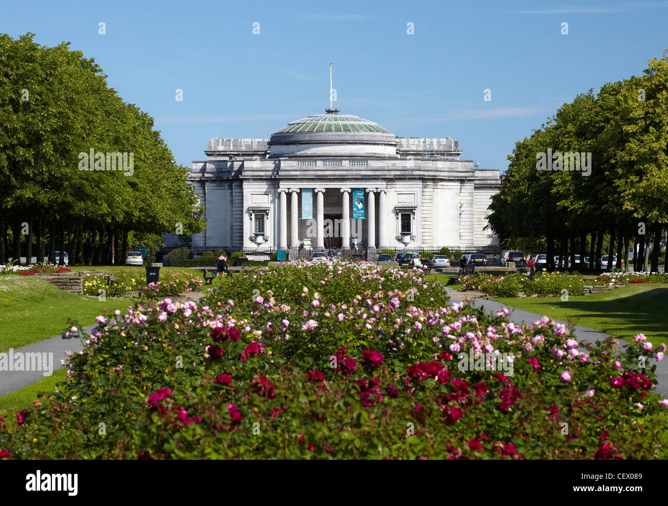 Avenue of roses leading to the Lady Lever Art Galllery in Port Sunlight village, Wirral, UK - Stock Image