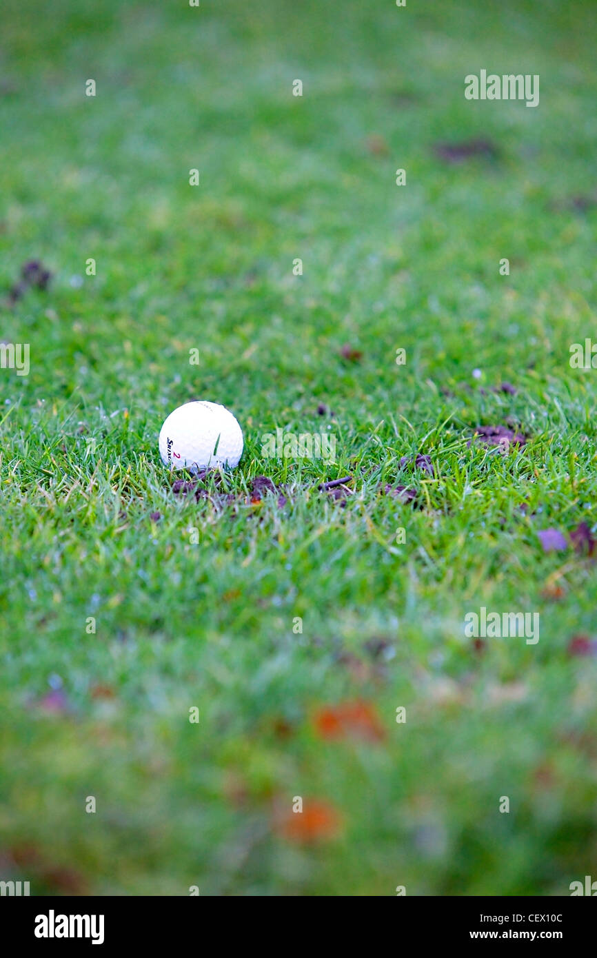Detail of golf ball on grass. - Stock Image